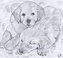 Cuddles and snuggles. by Peter Allton