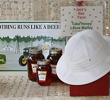 Take Honey Leave Money by Patricia Montgomery