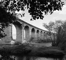 Bridge Over The River Wharfe #2 by acespace