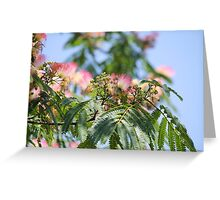 flowering trees in the park Greeting Card