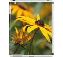 yellow echinacea iPad Case/Skin