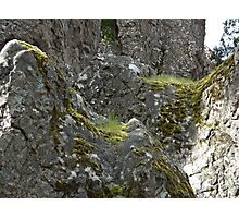 Moss at Hanging Rock Photographic Print