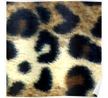 Spotted Leopard Print Poster