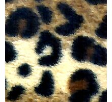 Spotted Leopard Print Photographic Print