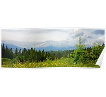 Summer in Carpathian Mountains  Poster
