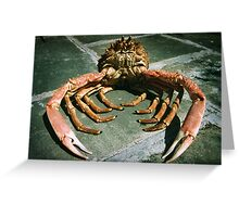 spider crab Greeting Card