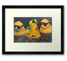 Hi Dude you are quaker's the sun's out! Framed Print