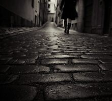 On The Wet Cobblestones by Mikael Raymond
