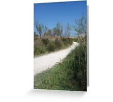 Bright White Path Greeting Card