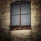 Window by Karen  Betts