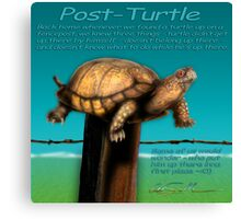 Post Turtle Canvas Print