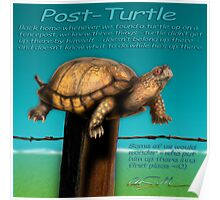 Post Turtle Poster