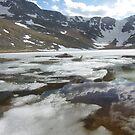 Summit Lake Reflection Mt. Evans by Daniel Doyle