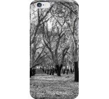 Oak Forest in Black and White iPhone Case/Skin