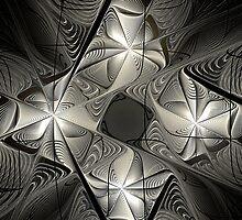 Modern Hoarfrost by Lauren Zorn