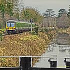 Train track by the canal by DES PALMER