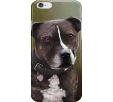 Stafforshire bull terrier 1 iPhone Case/Skin