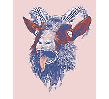 Rock Goat Photographic Print