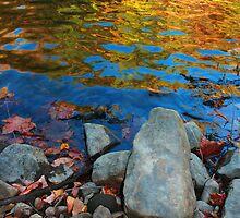 Autumn Water 2 by John  Goodman
