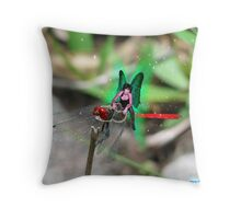 Dragon Fly Rider Throw Pillow