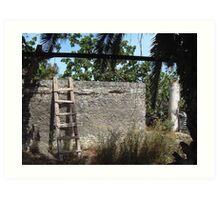 Greek Steps to Antiquity Art Print