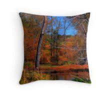 Stream In Autumn Throw Pillow