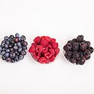 Three Kinds of Berries by dbvirago