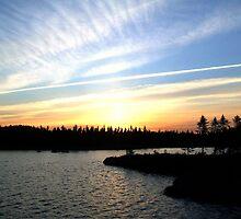 Redfox Sunset by Leo  Head
