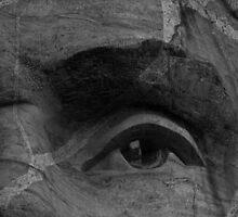 A Watchful Eye by Shari Galiardi