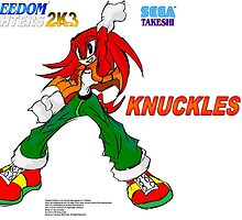 Freedom Fighter 2K3 Knuckles by TakeshiMedia