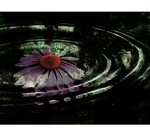 The Liquid Flower VIII Photographic Print