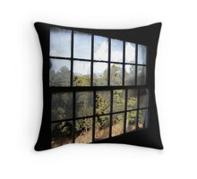 View out of groomsman quarters in old High Mesa Stables Throw Pillow