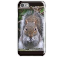Spokesman for The Squirrel Party.. iPhone Case/Skin