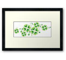 Clovers - St Patricks Day Framed Print