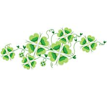 Clovers - St Patricks Day Photographic Print