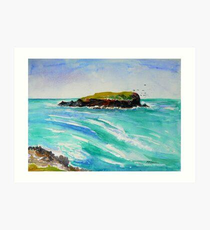 Cook Island #2 Art Print
