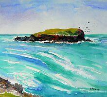 Cook Island #2 by Virginia McGowan