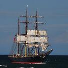 James Craig - Newcastle Harbour NSW by Bev Woodman