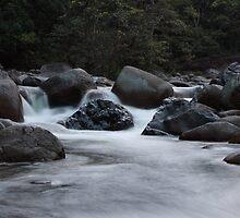 A River Runs Through by Di Edwards
