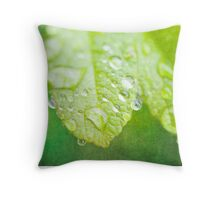 Green Leaves and drops of water Throw Pillow