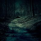The Lonely Road by Sanguine