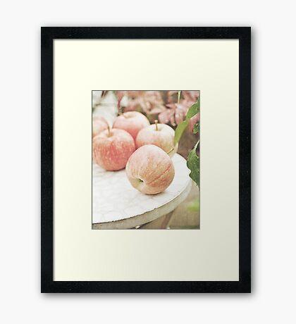 Garden apples Framed Print