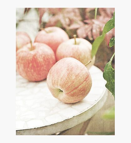 Garden apples Photographic Print