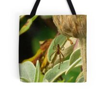 Only Eyes for You Tote Bag