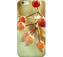 Red Berries iPhone Case/Skin