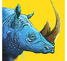 Blue Rhino on Yellow Background Photographic Print