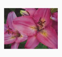 Pink Lily in the garden Kids Clothes