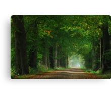 The first touch of autumn in laneland Canvas Print