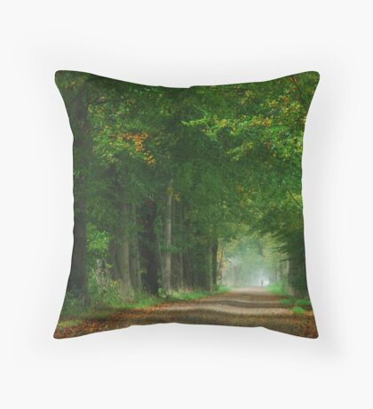 The first touch of autumn in laneland Throw Pillow