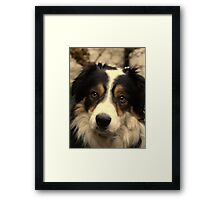 """Dogs do speak, but only to those who know how to listen.""  Framed Print"
